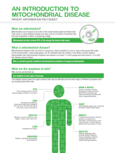 Mitochondrial Disease Infographic