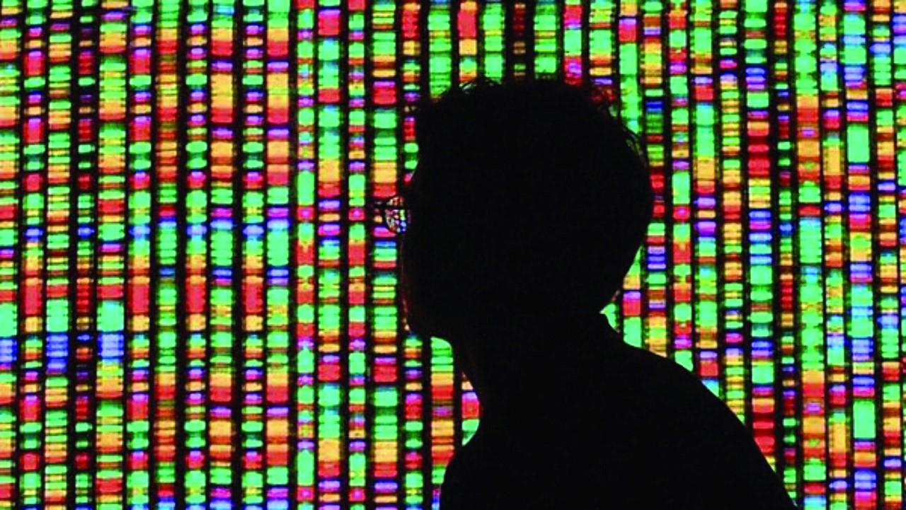 genome-colour