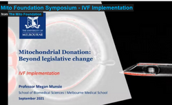 Link to Symposium 2021 - IVF Implementation Video